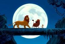 De Leeuwenkoning