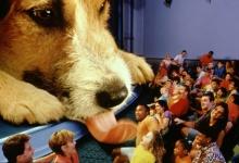 (Er was eens) 28 maart 1999: Opening van de attractie: Honey I Shrunk the Audience!